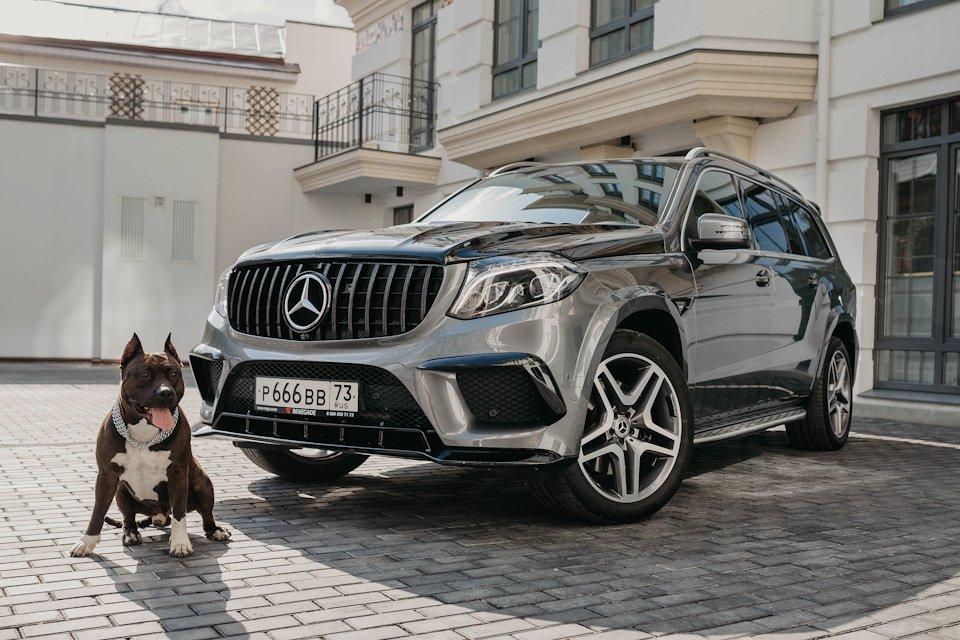 Mercedes GLS X166 RENEGADE (31)