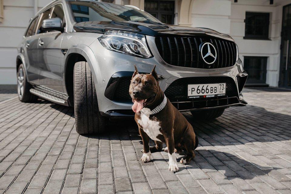 Mercedes GLS X166 RENEGADE (39)