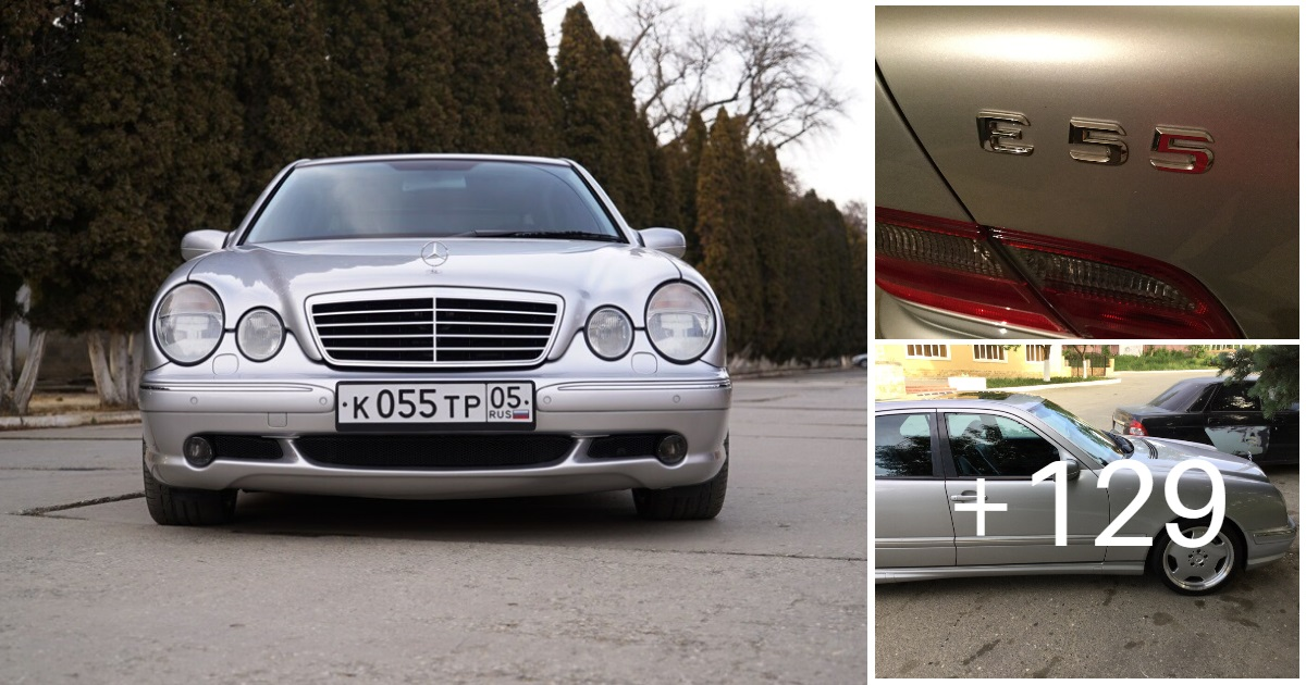 Mercedes-Benz E 55 AMG W210 (132 photos, 5 videos)